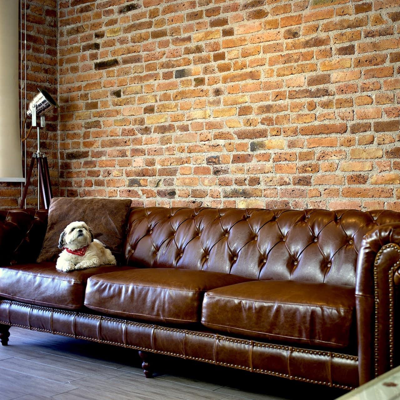 pared ladrillo falso departamento interior living mda