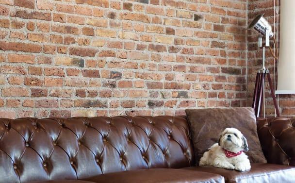 Enchape new york mda revestimiento para muros de estilo vintage - Revestimiento de muros ...